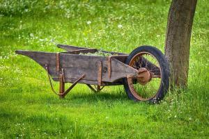 Cart garden